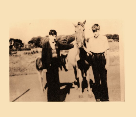 Paddy Lynch and Paddy Mc Gonagle with Bradley\'s Horses